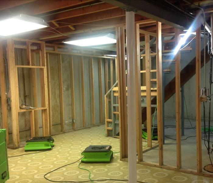 Extensive Mold Remediation in Elk Grove Village After
