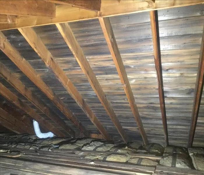 Attic sheathing stained by black mold