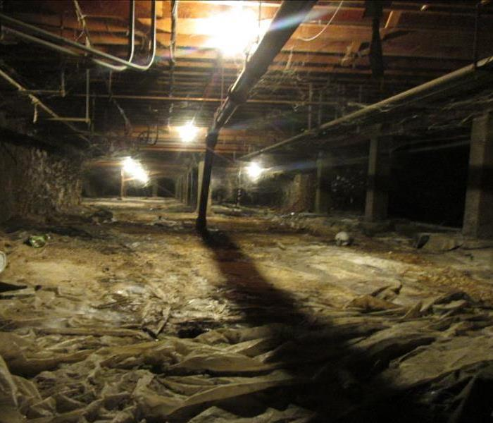 A large crawlspace affected by mold