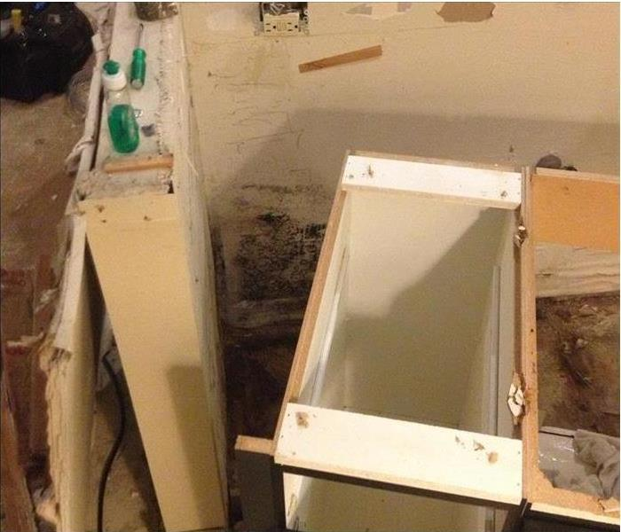 Mold Remediation - Elk Grove