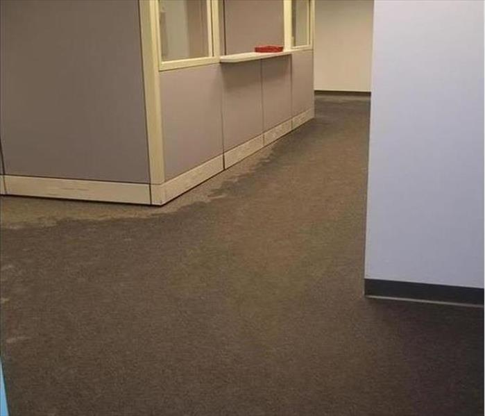 Office Water Problem - Schaumburg