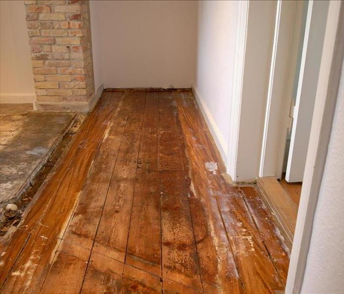 Water Damage Water Removal in Schaumburg May Require Professional Assistance