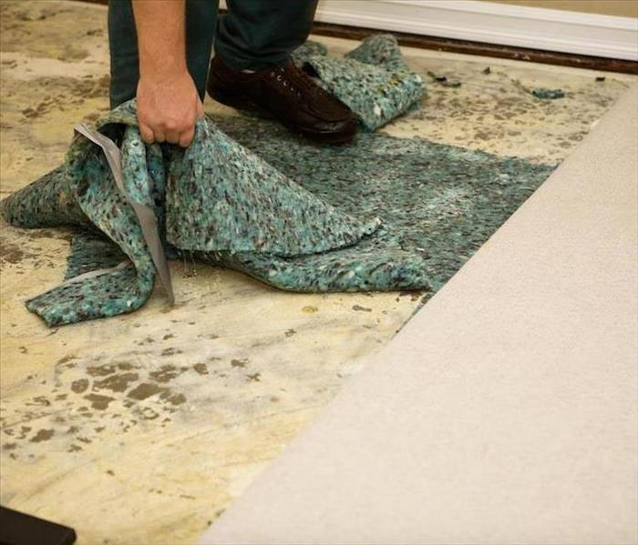 Water Damage Why Air Movers are Great for Repairing Water Damage in Elk Grove Village Homes