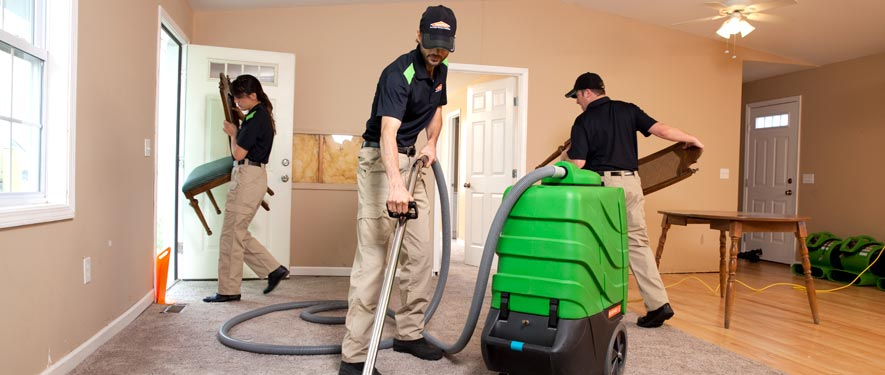 Elk Grove, IL cleaning services
